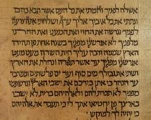 Scoperto alla Biblioteca dell'Università di Bologna il più antico Sefer Torah