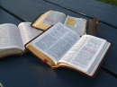 Bibbia & parola